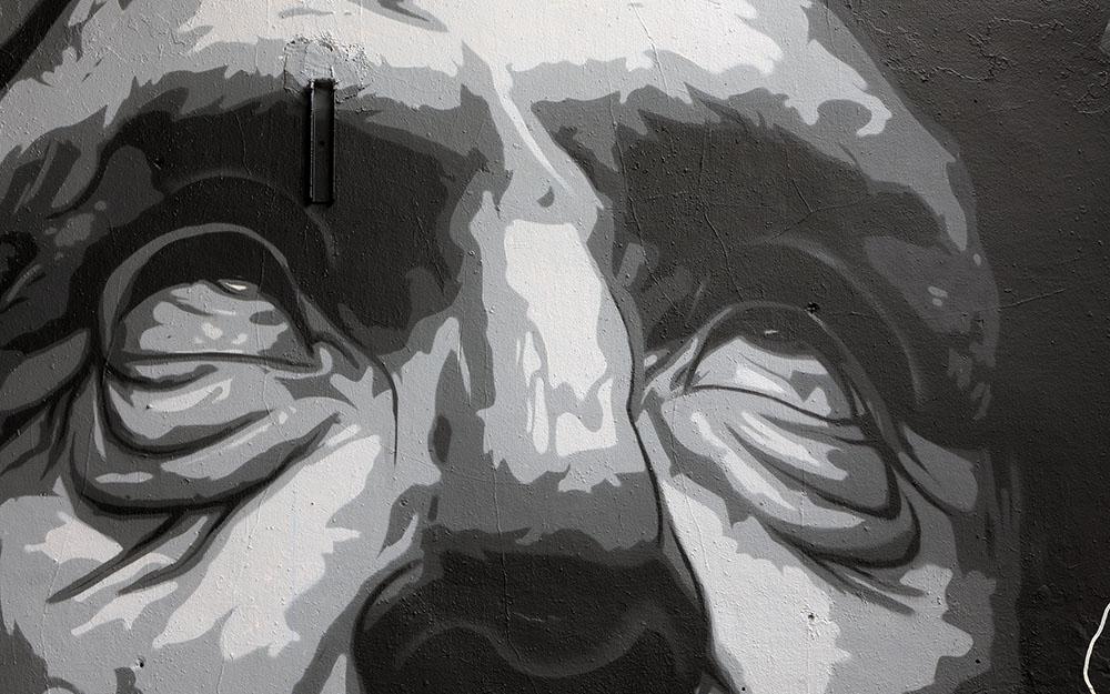 Zeus-Detail-2